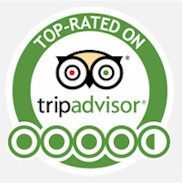 TripAdvisor Elephant POOPOOPAPER Park Best Attractions Chiang Mai Thailand